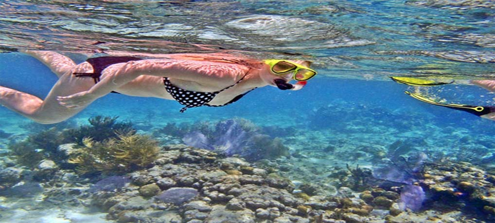 Special Snorkelling Tour over 1 day